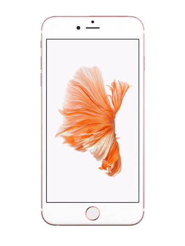 Frontansicht Apple iPhone 6S