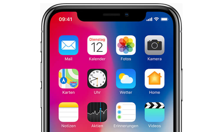 iPhone X Homescreen Detail